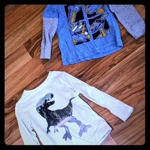 Dinosaur Long Sleeve Graphic tees, Size 4T
